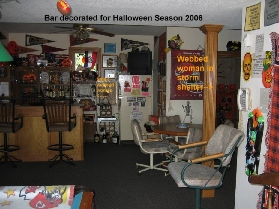 bar_northview.jpg (87648 bytes)